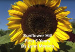 Sunflower Hill – The First 5 Years