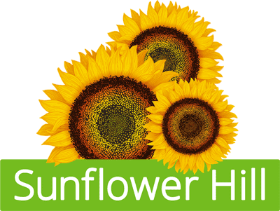 Sunflower Hill